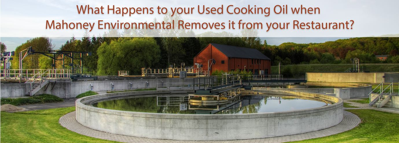 How Mahoney Environmental Recycles Used Cooking Oil